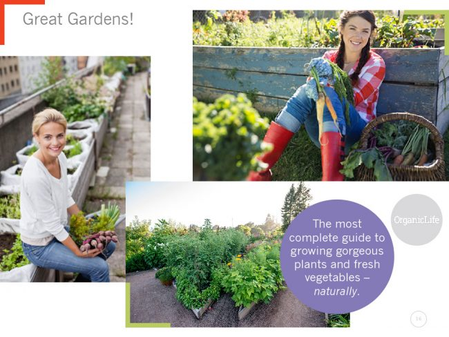 Three large images showcase gardens with the phrase